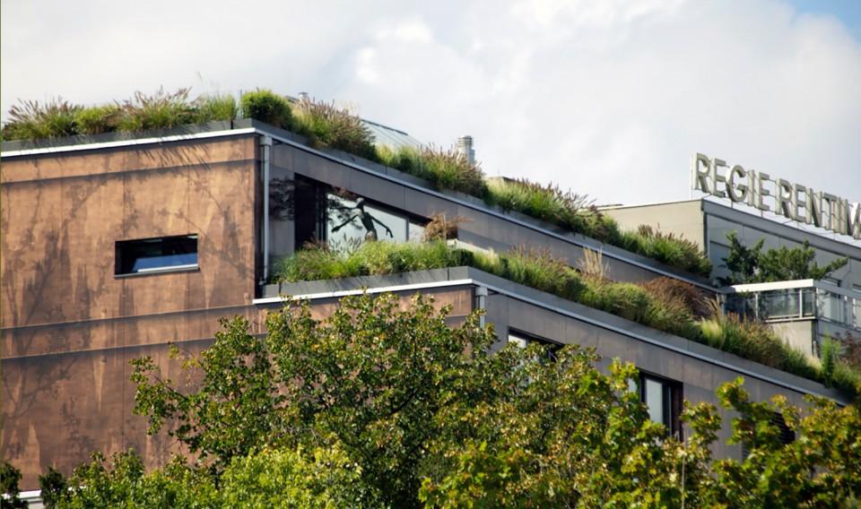 habitat_collectif_butini_ge_03_2011_projet